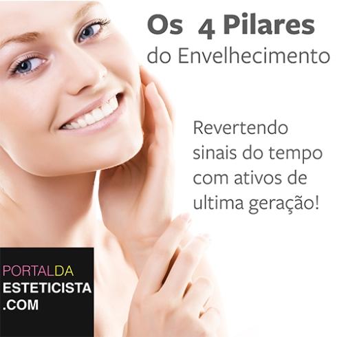 4 ETAPAS
